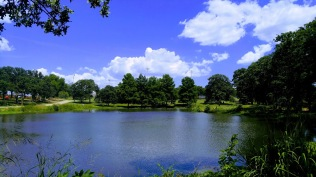 Randol Mill Pond